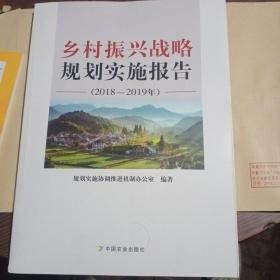 乡村振兴战略规划实施报告(20182019年)
