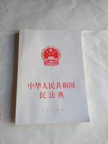 中华人民共和国民法典(大字本)(2020年6月)