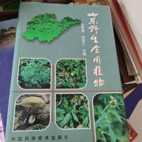 山东野生食用植物