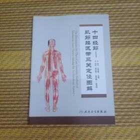 十四经筋一一肌筋膜区带三关定位图解