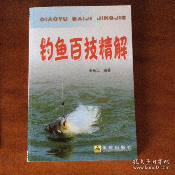 钓鱼百技精解