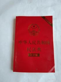中华人民共和国民法典   大字版