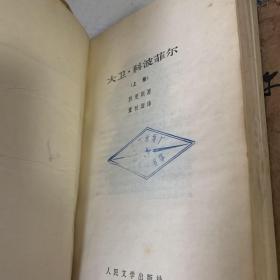 大卫·科波菲尔(上下):世界文学名著文库