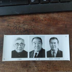 1993年,新当选的八届人大副委员长:铁木尔·达瓦买提(新疆维族)布赫(蒙古族)卢嘉锡