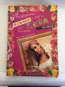 商业数码摄影艺术宝典:婚纱摄影篇(瑕疵如图)