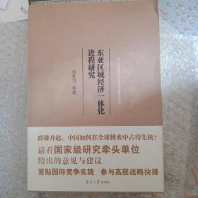 东亚区域经济一体化进程研究/亚太区域合作与全球经济治理研究丛书