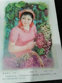 年画8==葡萄熟了