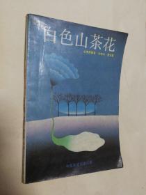 白色山茶花