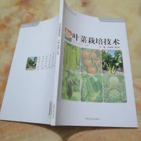 叶菜栽培技术