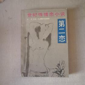 第二恋:世纪性情恋小说