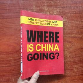 挑战与展望:著名学者聚焦中国热点话题(英文版)