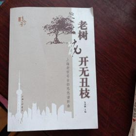 老树花开无丑枝:上海老字号古韵悠悠谱新曲