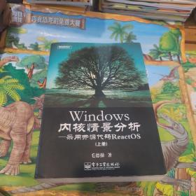 Windows内核情景分析:采用开源代码ReactOS 上册