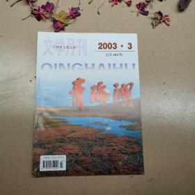 青海湖2003.3(包邮挂刷)