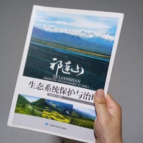 祁连山生态系统保护与治理