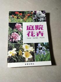 庭院花卉。