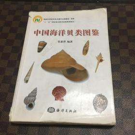 中国海洋贝类图鉴