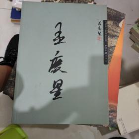 中国优秀书法篆刻家作品集. 孟庆星