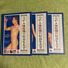 图解人体经络穴位养生大全(3卷) 彩图