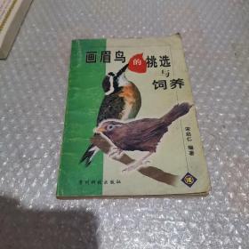 画眉鸟的挑选与饲养