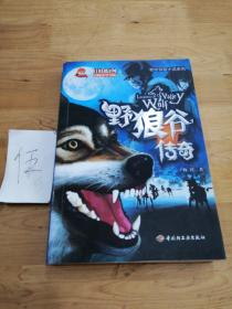野狼谷传奇-中国原创冒险文学书系