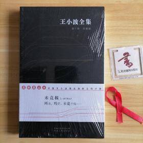 王小波全集(第十卷):未竟稿
