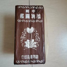中国植物图鉴(全一册民国版)