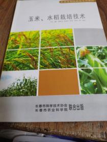 玉米水稻栽培技术