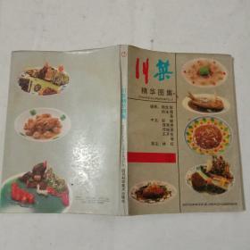川菜精华图集