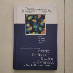 intrinsic multiscale structure and dynamics(内在多尺度结构与动力学)英文原版