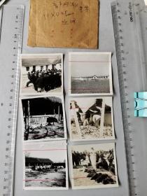 1958年,安徽顺河农业合作社、畜产畜牧业老照片六种