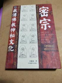 密宗:藏传佛教神秘文化(内页干净)