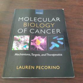 Molecular Biology Of Cancer