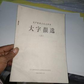 无产阶级文化大革命 大字报选