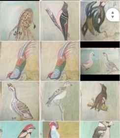 原创国画动物画水彩画手工绘画