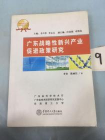 广东战略性新兴产业促进政策研究