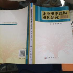 企业组织结构进化研究