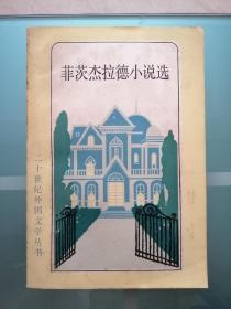 菲茨杰拉德小说选(二十世纪外国文学丛书)