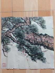 娄师白,为中国书画函授大学的古松示范画稿,老的