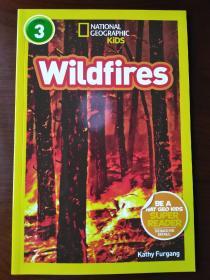 Wildfires 【正版全新】