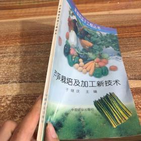 芦笋栽培及加工新技术