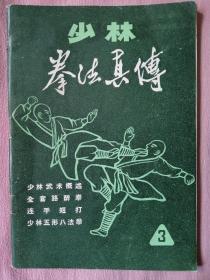 少林拳法真传3