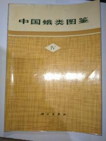 中国蛾类图鉴IV 4