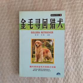 经典名犬系列5:金毛寻回猎犬