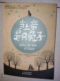 当上帝是只兔子:(最温暖的疗伤小说——总有一个上帝在爱你;2011年英国最畅销小说,感动整个欧洲)