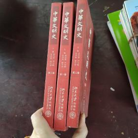 中华文明史  第1一3卷