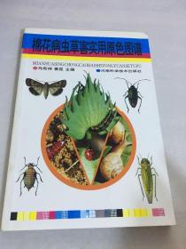 棉花病虫草害实用原色图谱