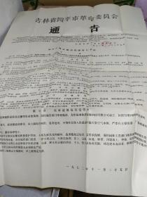 吉林省四平市革命委员会(城市建设管理的暂行办法)总则通告【宽108cm、长77cm】1974年
