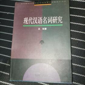 现代汉语名词研究