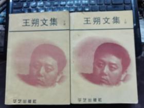 王朔文集(上下册)